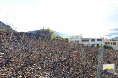 SIERRE Terrain à bâtir 1'000m² à CHF 250.-/m²